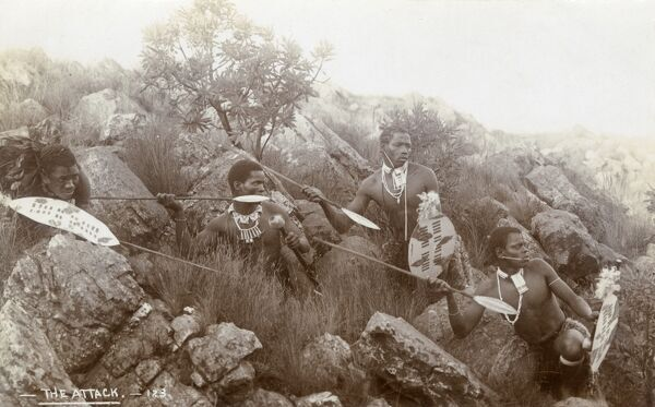 South Africa - Zulu Tribesmen ready to attack Date: 1900