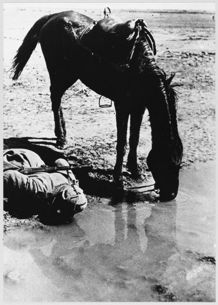A Soviet cavalryman shares a drink with his horse, at the Dneiper river