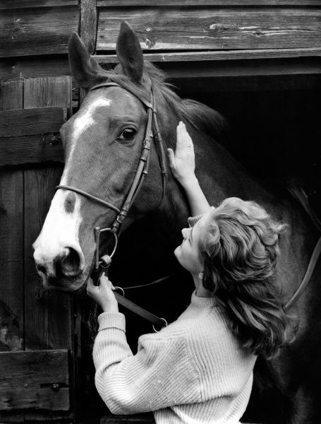 A stable girl with a horse