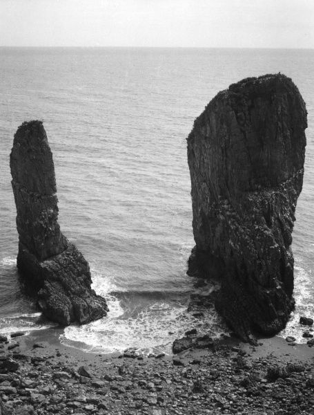 The Stack Rocks, St. Govan's Head, Pembrokeshire, South Wales. These two masses of isolated limestone are surviving fragments of the original cliff line. Date: BC