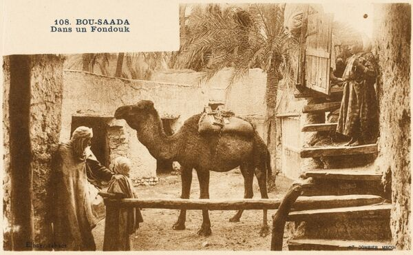 The steps leading down to a Fondouk courtyard with palm trees and camel at Bousaada, Algeria. The Fandouks are the old inns and trading posts for a city. Animals of the traders were housed inside the courtyards of the fandouk