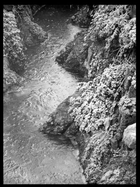 An unidentified stream with ice and frost