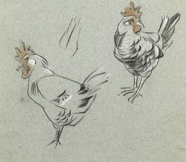 Study of two hens