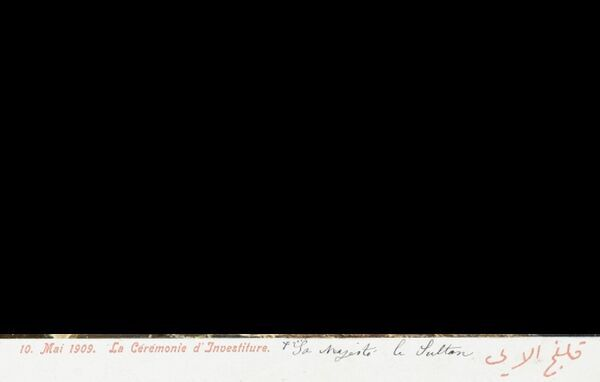 The Investiture ceremony of Sultan Mehmed V Reshad of Turkey (1844 - 1918) at the Topkapi Palace