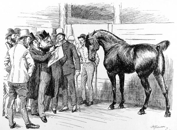 Engraving of a scene at the Summer Horse Show, Royal Agricultural Hall, Islington, London, May 1892. The original caption read 'Having his portrait taken by a London Artist&#39