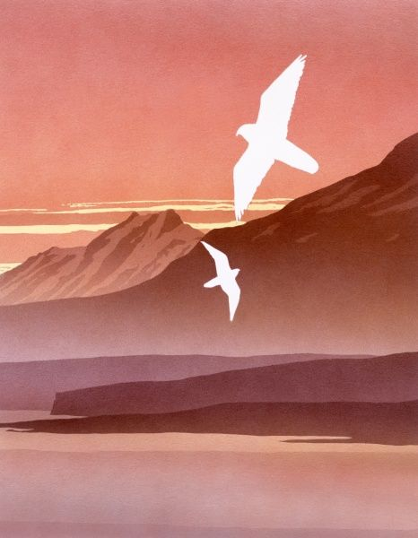 A sunset Fantasy landscape, with two birds of prey (Peregrine Falcons?) swooping across a landscape of high peaks, a still sea and enveloping mists. Airbrush painting by Malcolm Greensmith