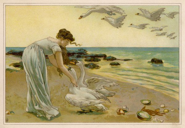 The princess and the swans - they are really her brothers, turned into swans by the wicked Queen's magic