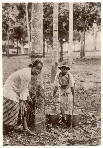A woman and young boy tap rubber trees in Malaya and collect the sap in buckets