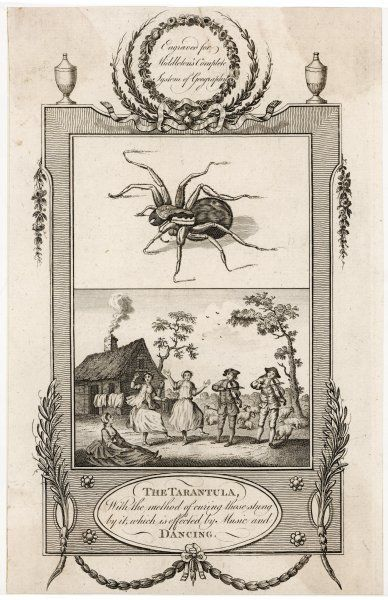 'THE TARANTULA With the method of curing those stung by it, which is effected by Music and DANCING' - specifically, by dancing the TARANTELLA