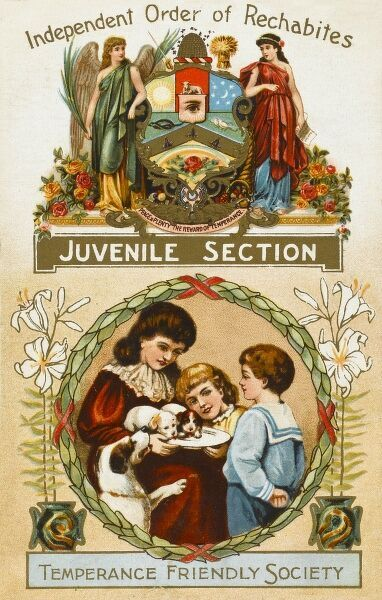 Temperance Friendly Society Postcard - Juvenile Section - savings and assurance benefits for men, women and children