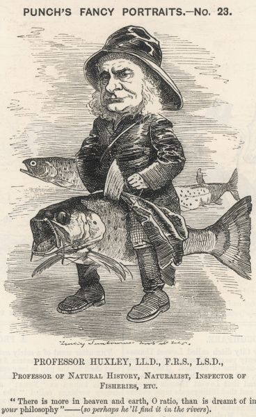 THOMAS HENRY HUXLEY A satire on the English scientist's role as Inspector of Fisheries