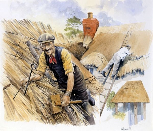 Two thatchers repair the thatch on the roofs of two traditional country cottages. Painting by Malcolm Greensmith