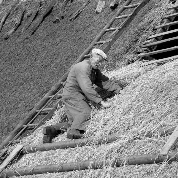 A roofer makes a thatched roof Date: 1950s