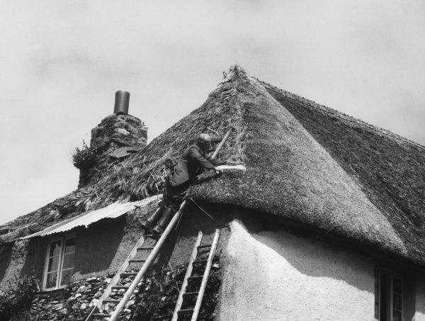 A village craftsman re- thatching a cottage at Stoke Gabriel, Devon