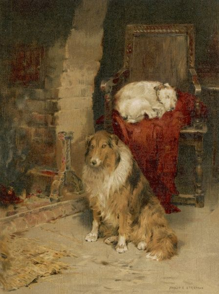 A cosy scene showing two dogs relaxing by a fireplace