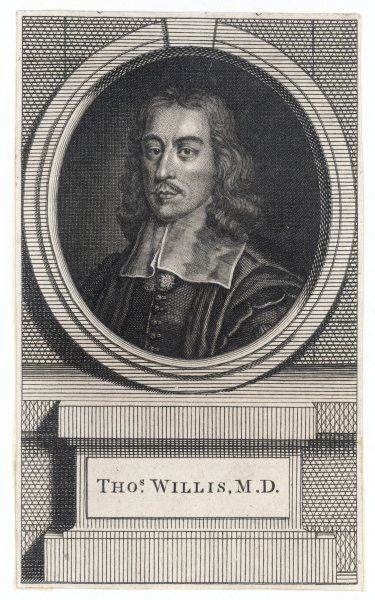 THOMAS WILLIS English anatomist and physician