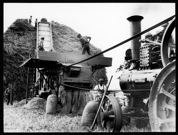 Men threshing wheat at a farm near Henley-on-Thames, Oxfordshire, England, using a Surrell's patent compound steam traction engine (mounted on springs)