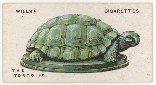 TORTOISE TALISMAN valued in the Far East as a protection against hostile magic