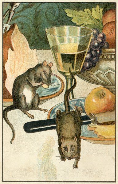 'LE RAT DE VILLE ET LE RAT DES CHAMPS' (the Town Mouse and the Country Mouse) - The country mouse alarmed by the sounds of the town house
