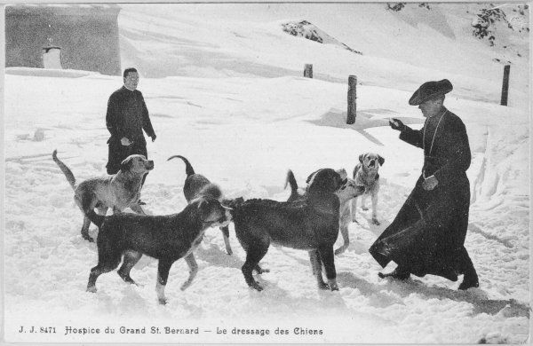 At the Hospice du Grand Saint- Bernard, dogs are trained to rescue unfortunate travellers who lose their way in the darkness and snow on the Alpine pass