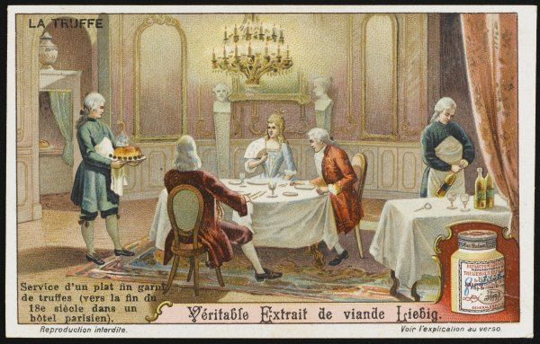 A party of gourmets enjoy truffles in 18th century Paris - it is now that the qualities of truffles come to be fully appreciated by chefs. card 5 of 6
