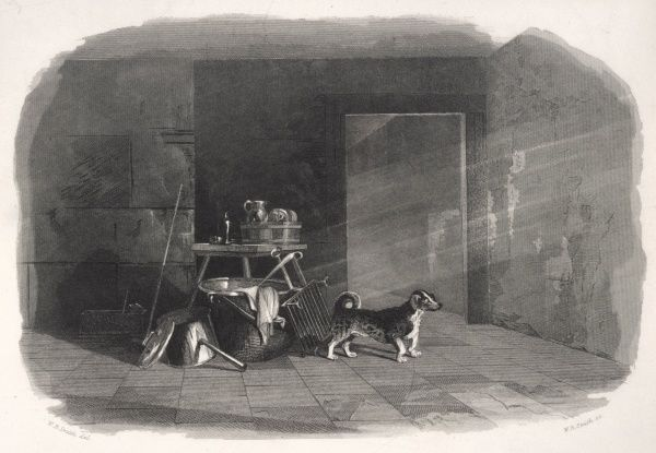 A turnspit dog depicted when not turning a spit : but this engraving shows the type of dog that was employed for this purpose