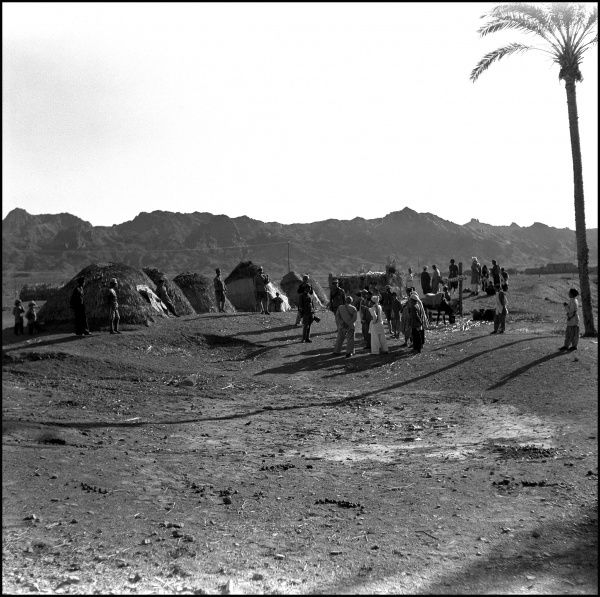An unidentified location in India -- a desert landscape with a palm tree, people and tents. Photograph by Ralph Ponsonby Watts