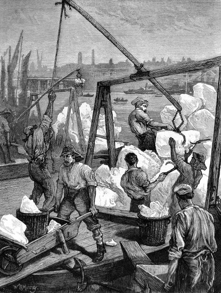 Engraving showing Norwegian ice being unloaded from a ship or barge at a London quay, 1874. Dockworkers are seen using cranes and axes to handle their load
