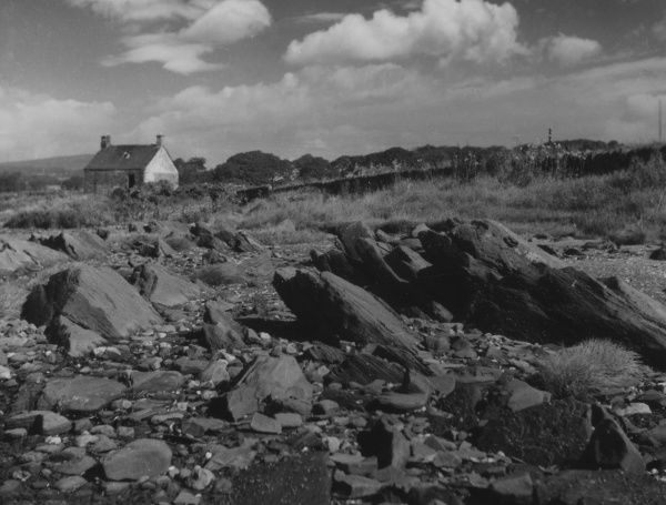 The rocky shore at Cardross, Dunbartonshire, Scotland, a good example of upturned conglomerates. Date: 1950s
