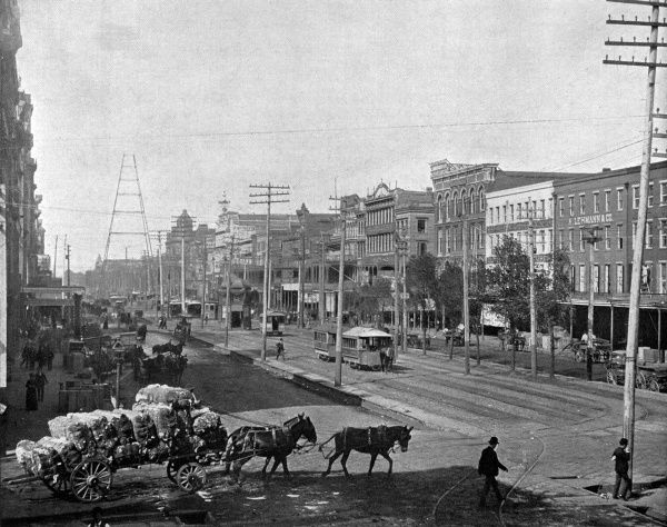 Mule-drawn carts loaded high with cotton cross a street in New Orleans, wide enough to accommodate three horse-drawn tram tracks. Date: 1895