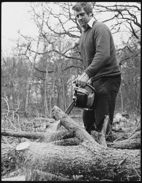 A man sawing branches off a tree with a petrol chainsaw
