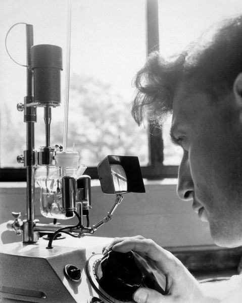 A scientist looks intently at the readings of an unspecified instrument. Date: 1962