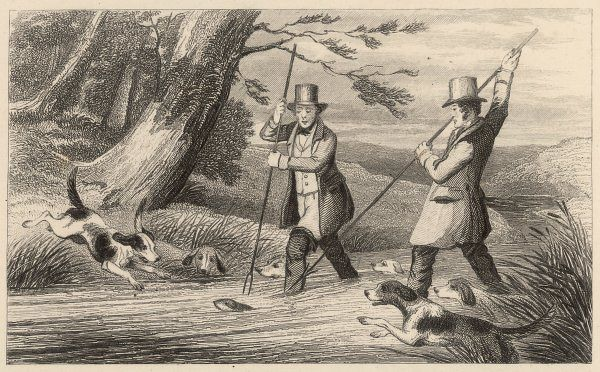 Victorian sportsmen hunting otters with the help of Otterhounds