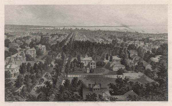 A bird's eye view of the town of Buffalo, looking towards Lake Erie