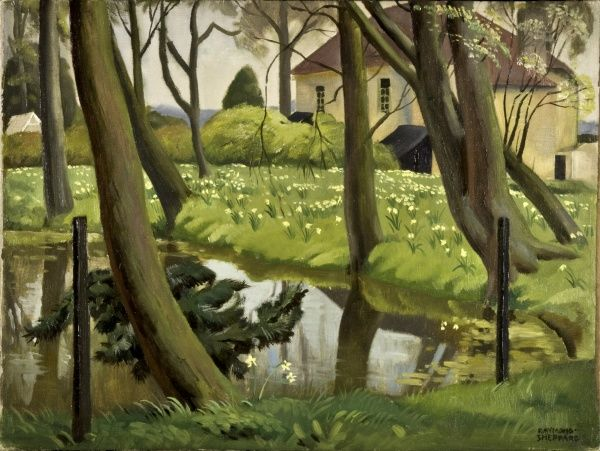 Daffodils on the banks of the village pond at Shenley, Hertfordshire. Painting by Raymond Sheppard