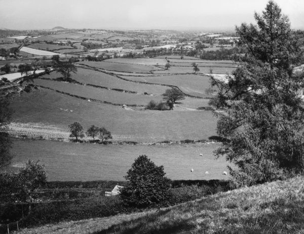 A view near Pentre Beirdd, Montgomeryshire, Wales. Date: 1960s