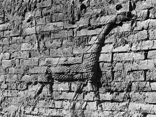 This curious animal bas relief carving is on the ancient walls of Babylon (modern Iraq). Date: BC
