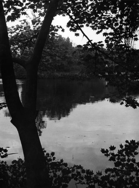 The small pond on Wandsworth common, south west London. Date: 1930s
