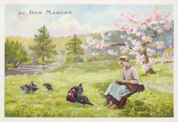 A young girl watches over her turkeys, with cherry blossom in the background