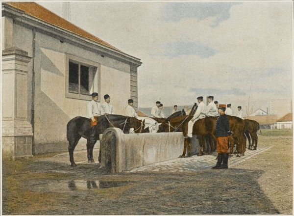 French cavalrymen water their horses at the 'abreuvoir'. Horses should be watered twice a day in summer, once in winter