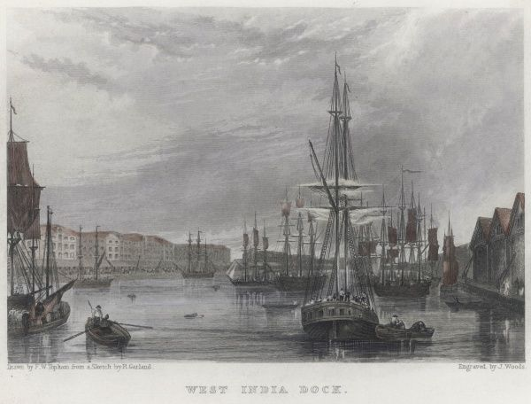 The West India Import Dock