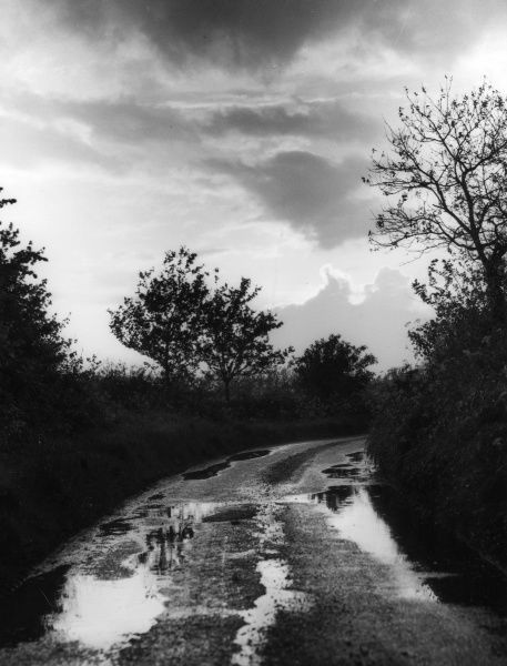 After the rainstorm - an autumn study of a wet country lane, covered in puddles. Date: 1950s