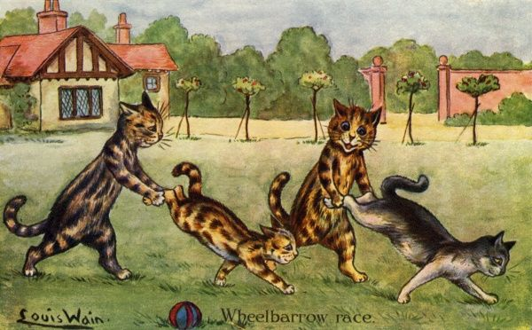 Wheelbarrow Race. Artist: Louis Wain. A group of cats enjoy this popular pastime in the garden Date: 1904
