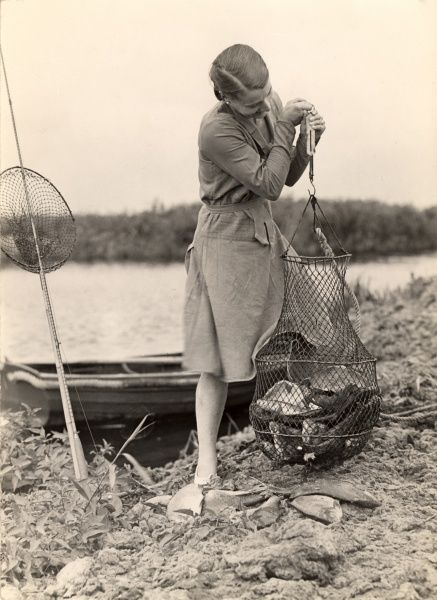 A lady struggles to hold a fishing net bulging with bream, at Hickling Broad, Norfolk in the 1930s