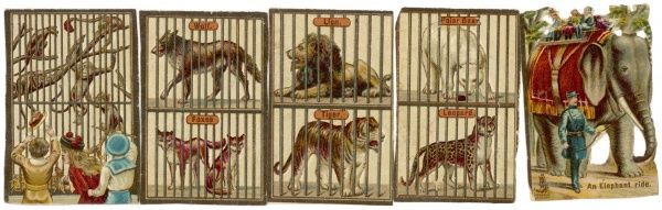 An assortment of animals in a Victorian zoo including, monkeys, lion, tiger, wolf, foxes, leopard and polar bear