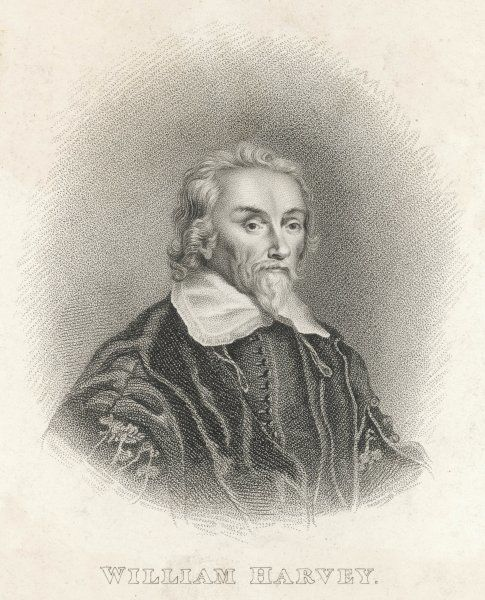 WILLIAM HARVEY English physician who first expounded the theory of circulation of blood