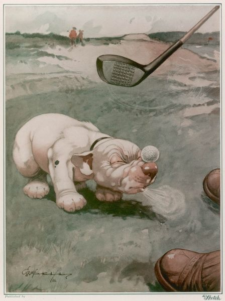 Bonzo suffers from his master's new craze for freak golf. Poor Bonzo gets whacked on the head with a golf club when his owner decides to use his nose instead of a tee on the green. Credit line must read: Estate of George Studdy/Gresham Marketing Ltd