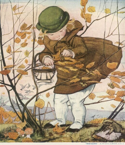 A little girl in a coat and hat picks nuts from the branches of a tree which is rapidly losing its leaves in the autumnal breeze