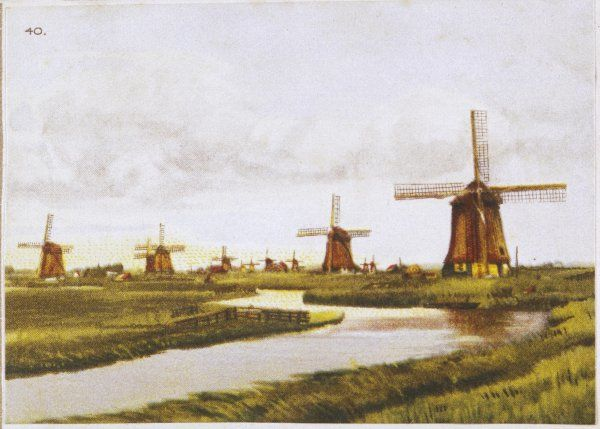 Group of windmills at Schermenpolder, Netherlands