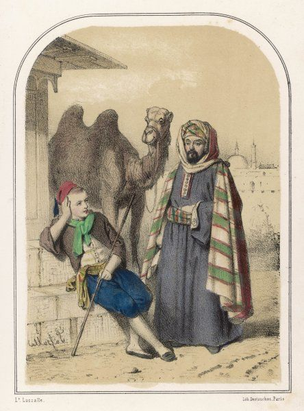 The story of Ali and the wise camel which will bring good fortune